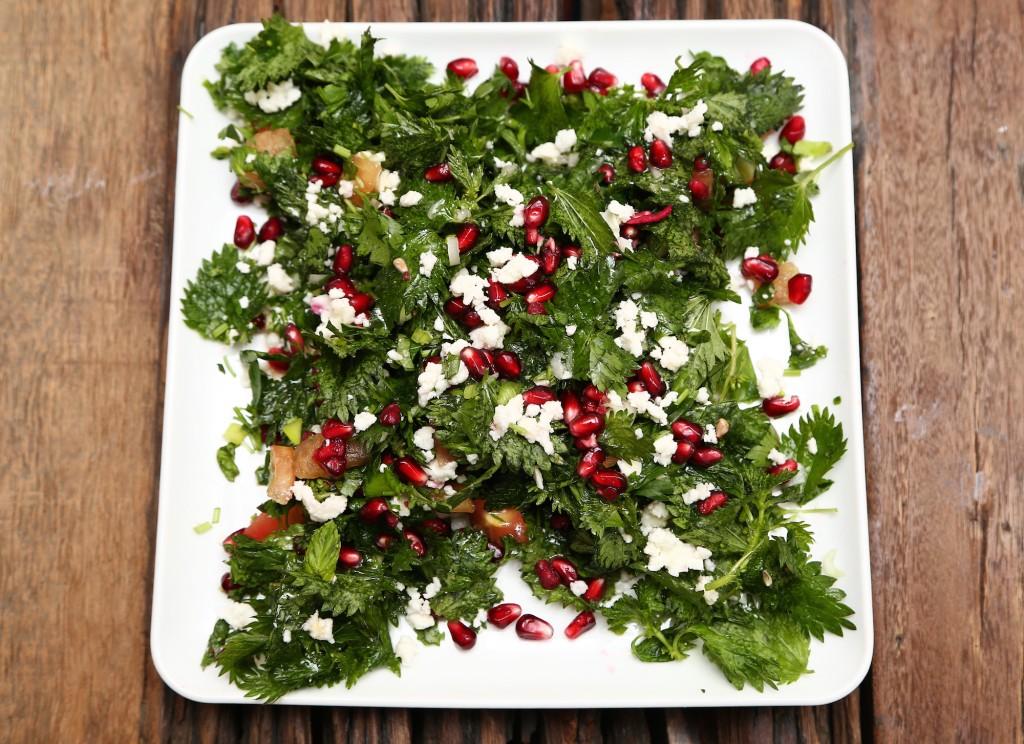 ısırgan otu salatası