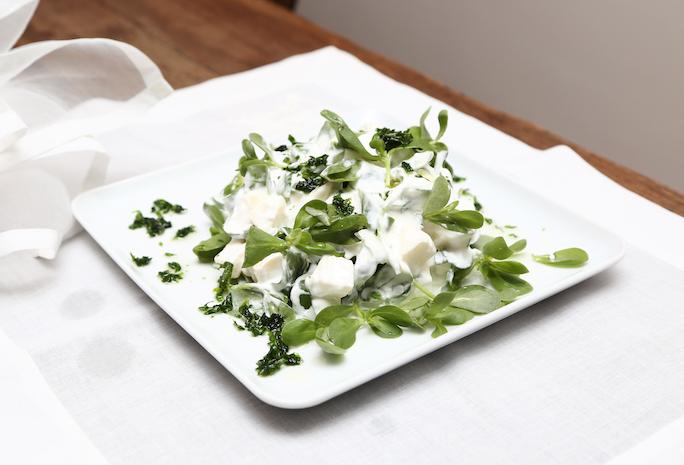 Ekşi Elmalı Semizotu Salatası webiçin2